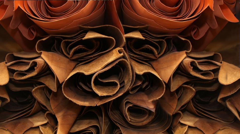 cuir 1100x615 - Fabrication du cuir : bonnes pratiques et choses à éviter