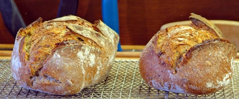 pain2 - Cuir végétal : qu'est-ce que c'est ?