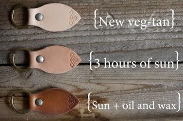 evolution cuir végétal
