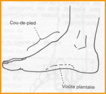cou de pied - La chaussure derby : origines et histoire