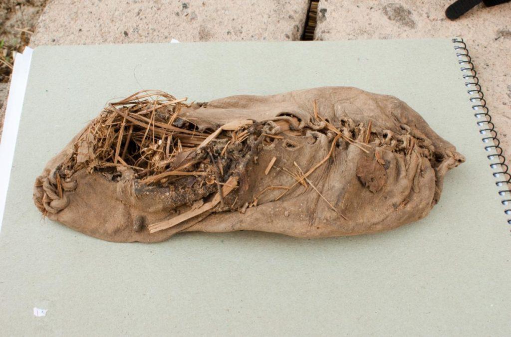 moccasin plus vieille chaussure du monde